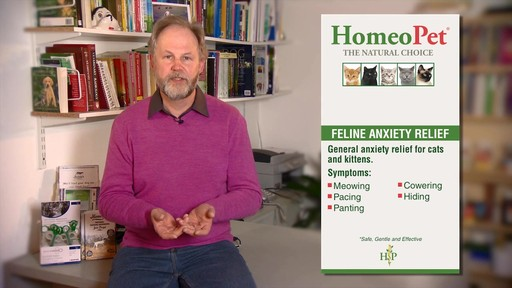 HomeoPet Feline Anxiety Relief - image 6 from the video