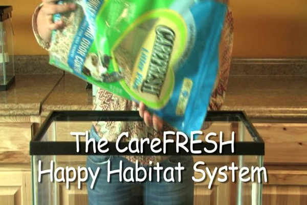 MOUSE - Carefresh happy habitat - image 3 from the video