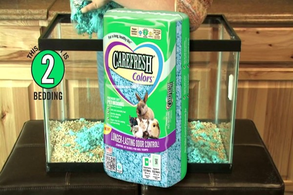 MOUSE - Carefresh happy habitat - image 5 from the video