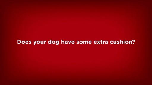 Hill's Science Diet Perfect Weight Adult Dog Food - image 3 from the video