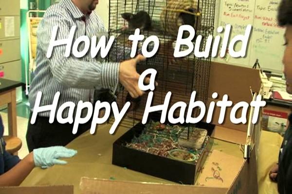 SYRAN HAMSTER - Carefresh happy habitat  - image 1 from the video