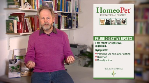 HomeoPet Feline Digestive Upsets - image 10 from the video