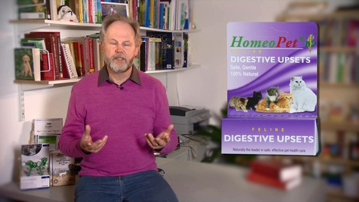 HomeoPet Feline Digestive Upsets - image 2 from the video