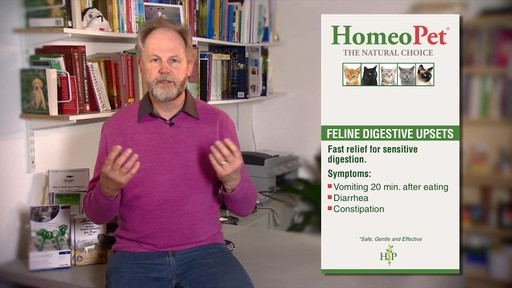 HomeoPet Feline Digestive Upsets - image 3 from the video