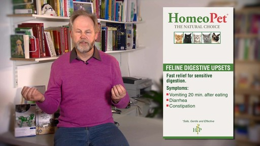 HomeoPet Feline Digestive Upsets - image 4 from the video