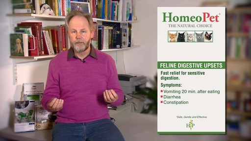 HomeoPet Feline Digestive Upsets - image 5 from the video