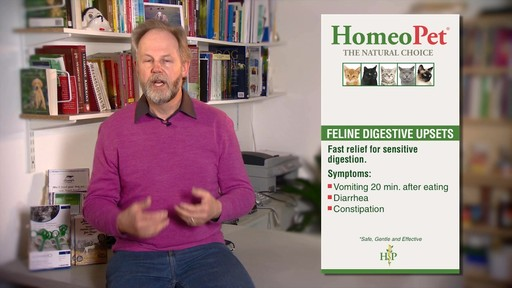 HomeoPet Feline Digestive Upsets - image 6 from the video