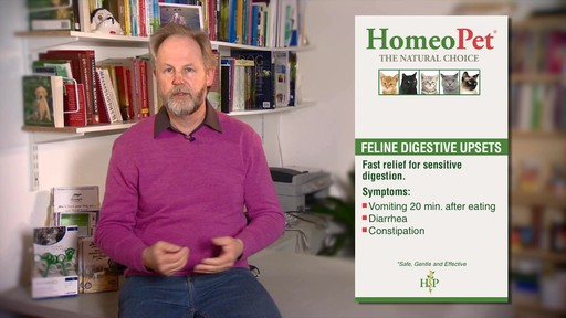 HomeoPet Feline Digestive Upsets - image 8 from the video