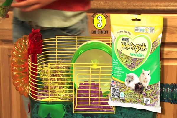 DWARF HAMSTERS - Carefresh happy habitat - image 5 from the video