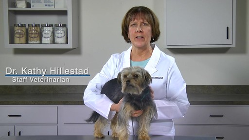 Doctors Foster   Smith Fiprotrol Topical Flea & Tick Control - image 1 from the video