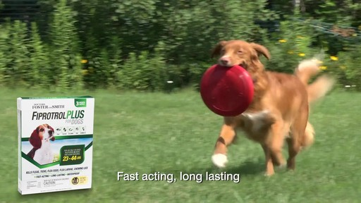 Doctors Foster   Smith Fiprotrol Topical Flea & Tick Control - image 6 from the video