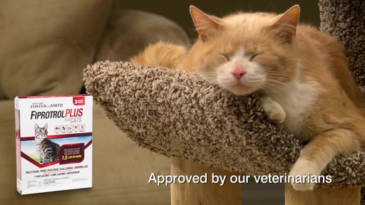 Doctors Foster   Smith Fiprotrol Topical Flea & Tick Control - image 8 from the video