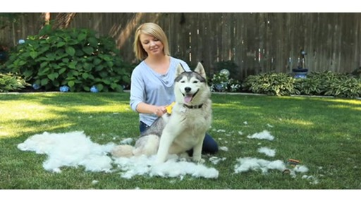 FURminator Long Hair deShedding Tool for Large Dogs - image 10 from the video