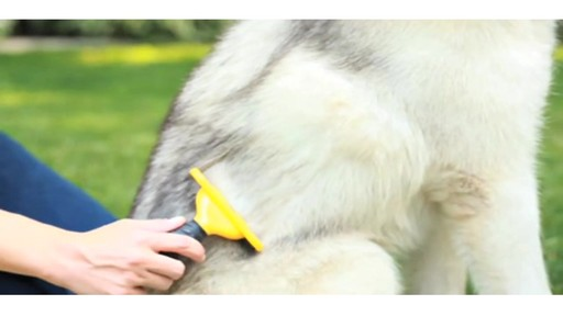 FURminator Long Hair deShedding Tool for Large Dogs - image 3 from the video