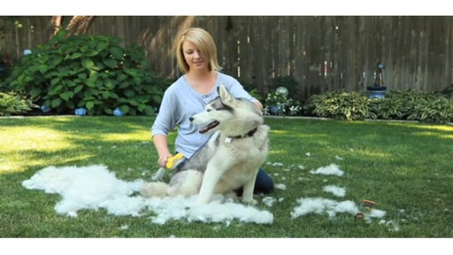 FURminator Long Hair deShedding Tool for Large Dogs - image 6 from the video