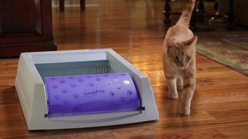 ScoopFree Ultra Self-Cleaning Litter Box - image 8 from the video