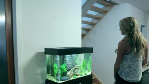 Fluval Accent Aquarium and Cabinet Combo - image 6 from the video