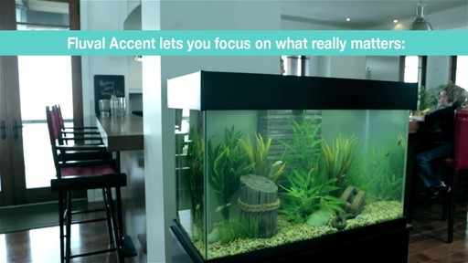 Fluval Accent Aquarium and Cabinet Combo - image 7 from the video