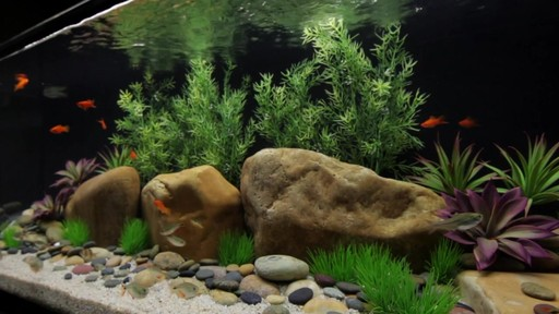 Current USA Satellite Freshwater Aquarium LED Plus Light - image 8 from the video