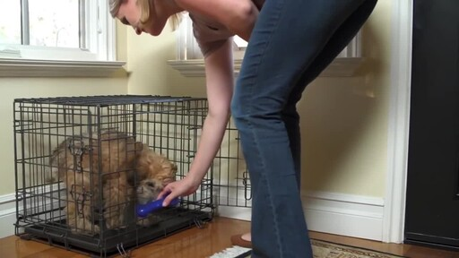 How to Potty Train Your Puppy  - image 7 from the video