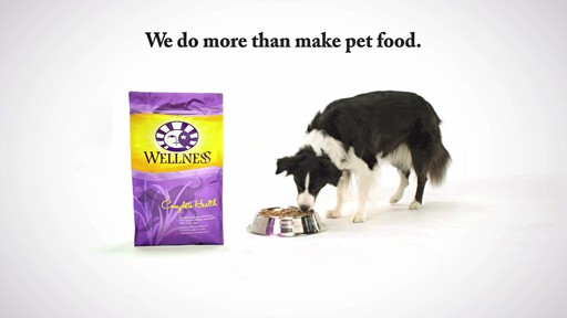 Wellness Super5Mix Complete Health Dog Food - image 10 from the video