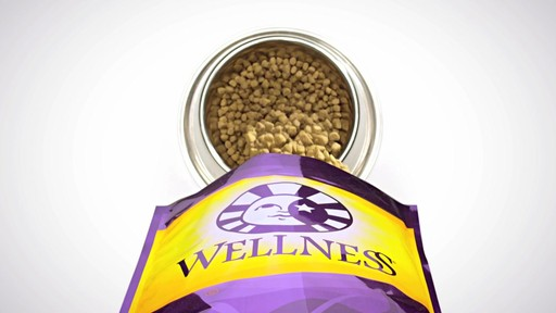 Wellness Super5Mix Complete Health Dog Food - image 7 from the video