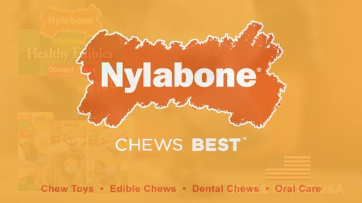 Nylabone Healthy Edibles Giant Size Roast Beef Flavored Dog Bone Chew - image 10 from the video
