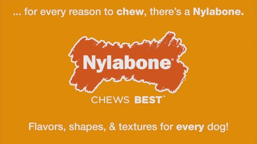 Nylabone  - image 10 from the video
