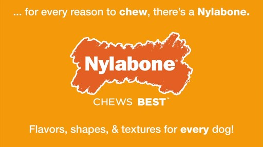 Nylabone  - image 9 from the video