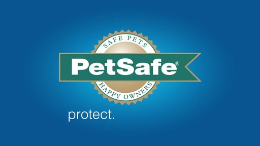 PetSafe AutoTrainer Anti-Bark Treat Dispenser - image 10 from the video