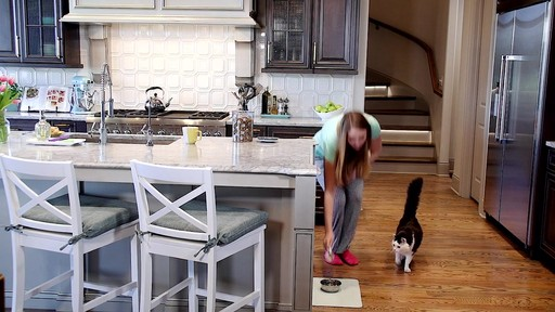 PetSafe Healthy Pet Simply Feed Automatic Feeder - image 2 from the video