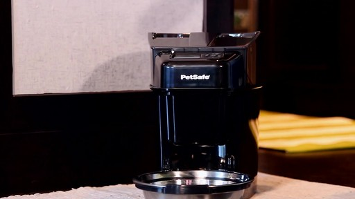 PetSafe Healthy Pet Simply Feed Automatic Feeder - image 6 from the video