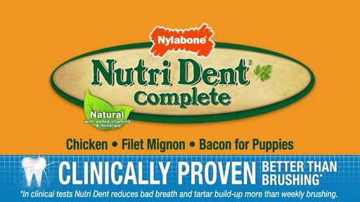 Nylabone Nutri Dent Complete Dental Chew  - image 10 from the video