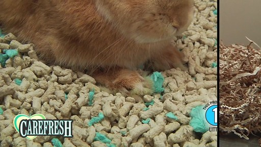 Carefresh happy habitat with Dr Hess - image 3 from the video