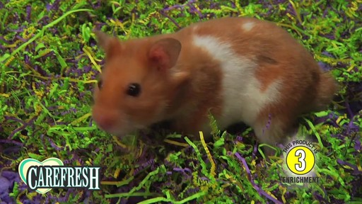 Carefresh happy habitat with Dr Hess - image 8 from the video
