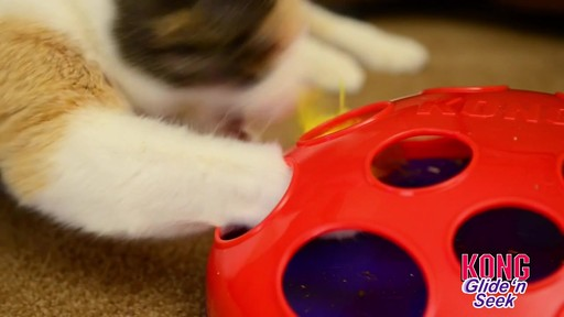 KONG Glide & Seek Cat Toy - image 2 from the video