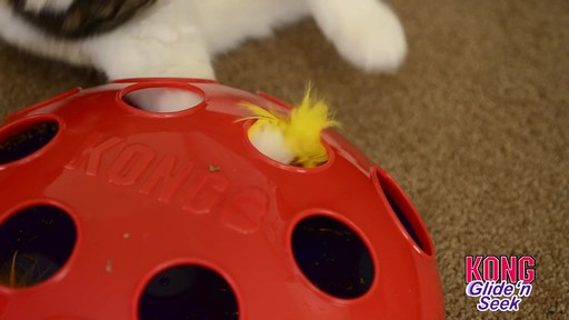 KONG Glide & Seek Cat Toy - image 4 from the video
