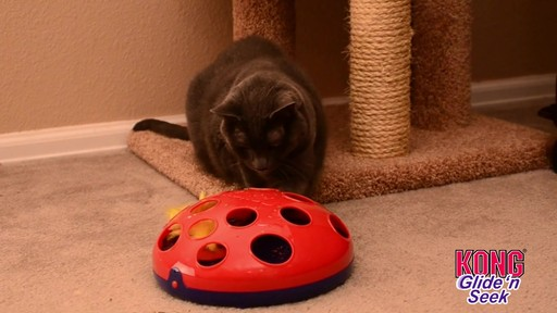 KONG Glide & Seek Cat Toy - image 6 from the video