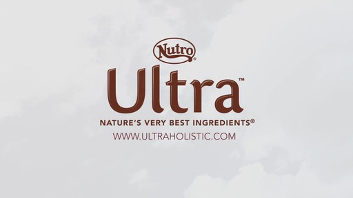 NUTRO® ULTRA™ Food for dogs - image 10 from the video