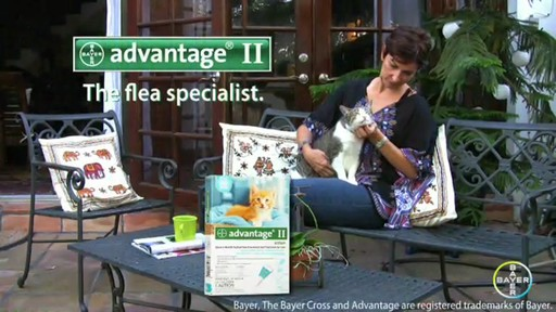 Advantage II Once-A-Month Cat & Kitten Topical Flea Treatment - image 10 from the video