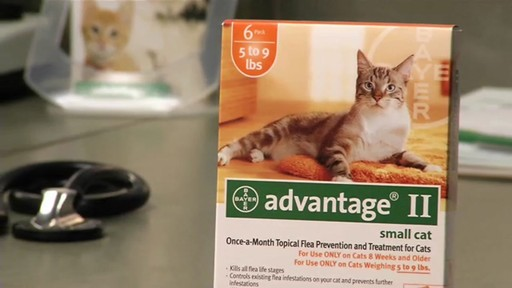 Advantage II Once-A-Month Cat & Kitten Topical Flea Treatment - image 4 from the video