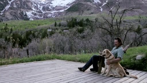 Canyon Creek Ranch - Natural Pet Food - image 8 from the video