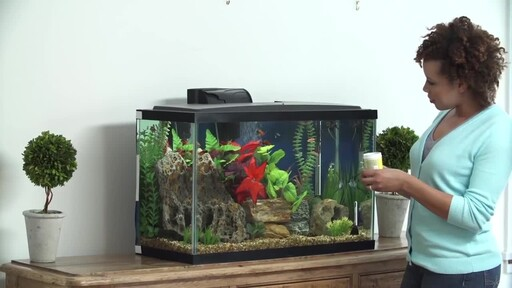 How to Setup a Fish Tank - Freshwater - image 10 from the video
