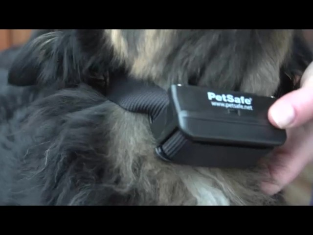Receiver Collar - PetSafe Wireless Mapping Fence Extra Receiver Collar - image 5 from the video