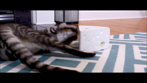PetSafe Automatic Cheese Cat Toy - image 6 from the video