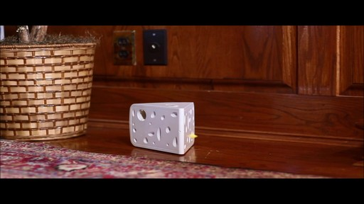 PetSafe Automatic Cheese Cat Toy - image 7 from the video