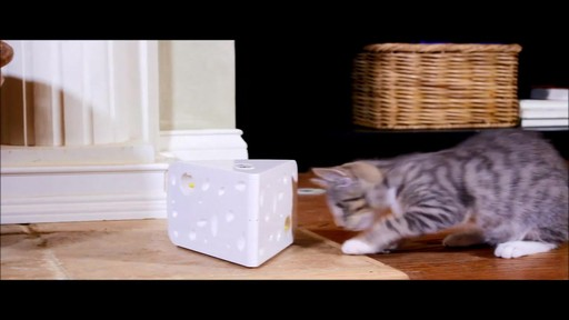 PetSafe Automatic Cheese Cat Toy - image 9 from the video