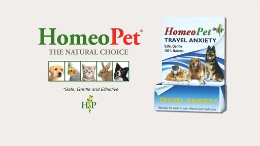 Homeopet Anxiety Tfln Natural Homeopathic Remedy For Pets
