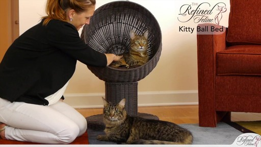 The Refined Feline Kitty Ball Bed in Espresso - image 10 from the video
