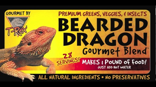 Bearded Dragon Gourmet Food - image 10 from the video